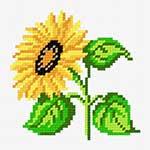 N·1036: Соняшник