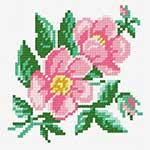 N·1236: Дві квітки шипшини і бутон