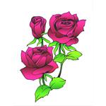 O·002: Три розы