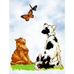 O·018: Кот и пёс ловят бабочек