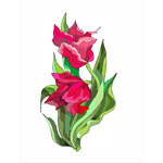 O·026: Красные тюльпаны