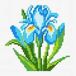 O·1035: Блакитий півник