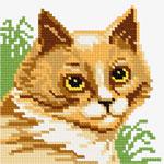 O·1115: Кішка серед трави