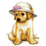 O·2415: Собачка в шляпке