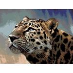 O·2439: Леопард