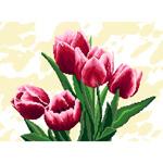 O·2528: Тюльпаны