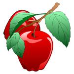 O·310: Алые яблочки
