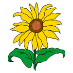 O·324: Солнышко-подсолнушек