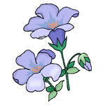 O·331: Цветы-колокольчики