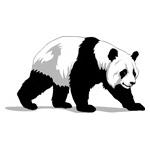 O·344: Панда