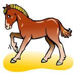 O·384: Лошадка