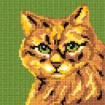 A22 Руда кішка