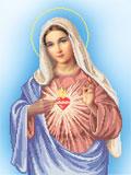 A503 Непорочне Серце Марії