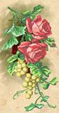 A556 Троянди і виноград