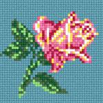 B10 Ніжна троянда