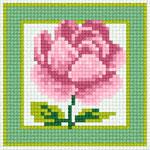 B38 Троянда