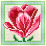 B41 Тюльпан