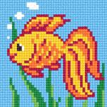 B66 Золота рибка