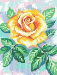 D25 Жовта троянда