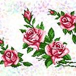 K213 Троянди (3 фраґменти)
