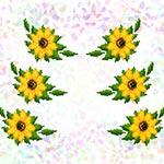 K236 Соняшники (6 фраґментів)