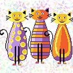 K315 Модні коти