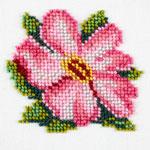 L428 Квітка шипшини