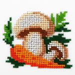 L498 Морква і гриби