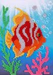 L617 Коралові рифи