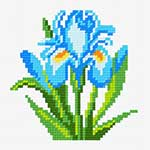 N1035 Блакитий півник