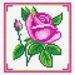 N1239 Рожева троянда кохання