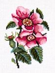 N1501 Квітки шипшини