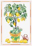 N2604 Лимонне деревце