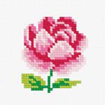 N902 Троянда