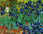 P20 «Півники», В. ван Гог