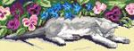 S18 Кіт серед фіалок