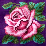 X2023 Троянда