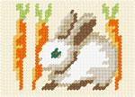 X2122 Трусик з морквинами