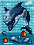X2229 Дельфін грається в воді